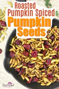 Easy Roasted Pumpkin Spice Pumpkin Seeds