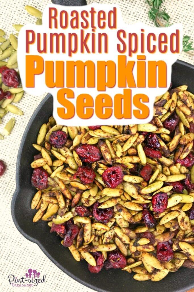 Roasted Pumpkin Spice Pumpkin Seeds
