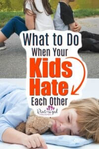 What to Do When Your Kids Hate Each Other