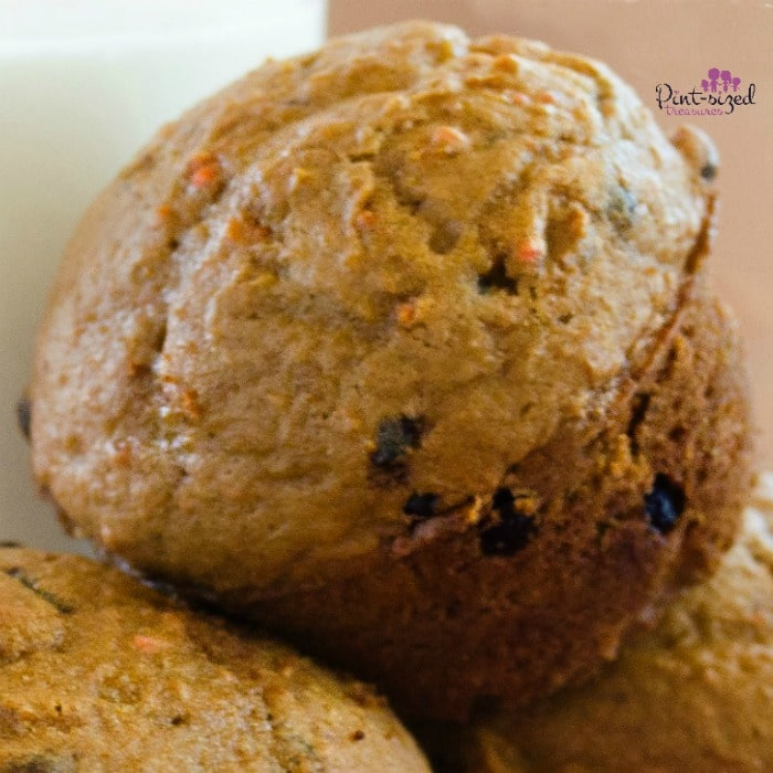 Easy Cake mix Chocolate Chip Muffin Recipe