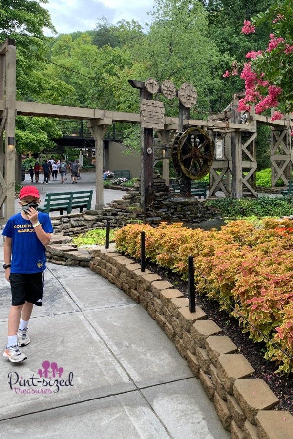flowers at Dollywood