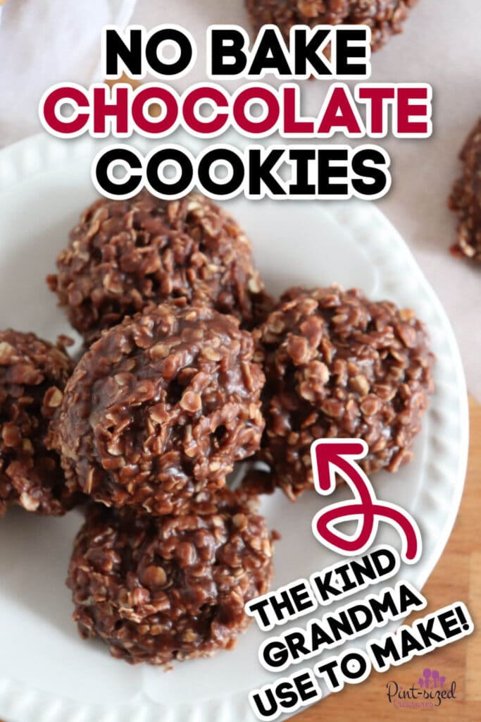 close up of no bake cookies recipe