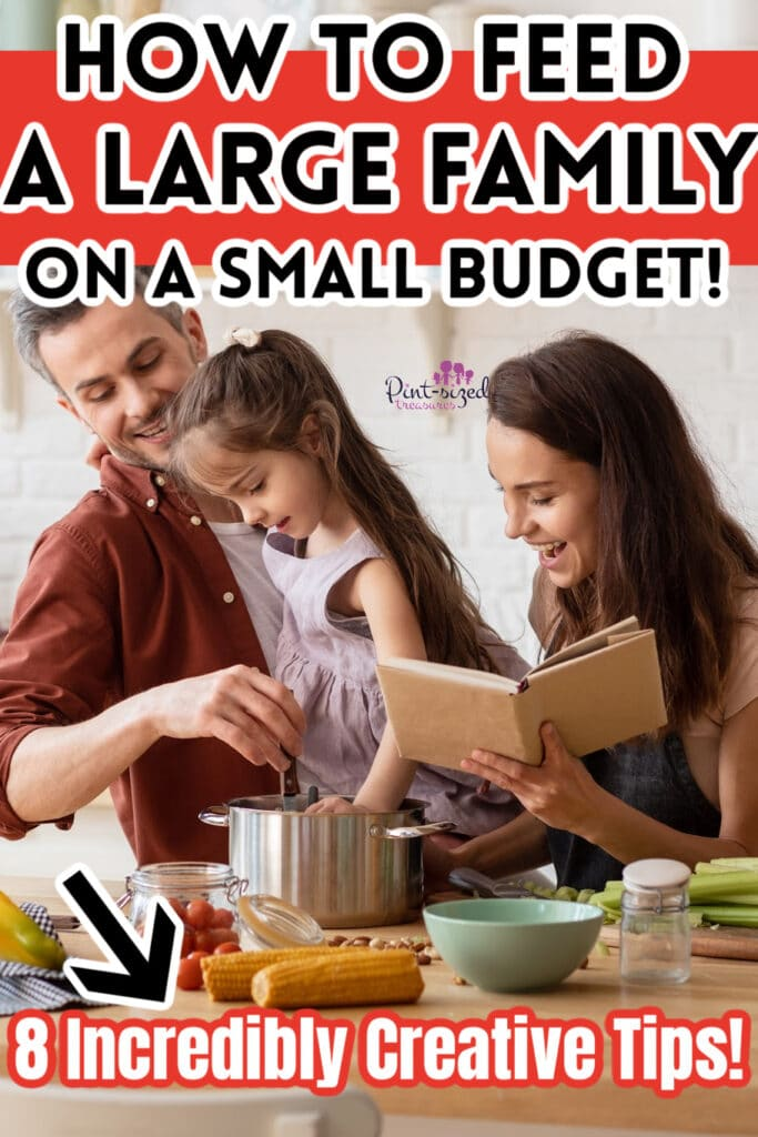 family cooking together in order to feed a large family on a skinny budget